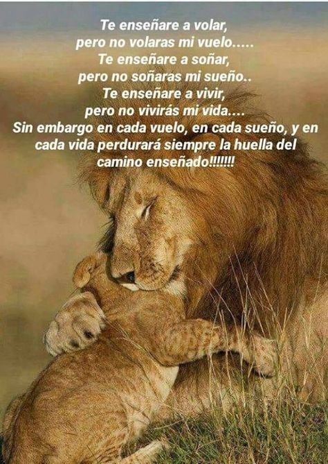 Life quotes, Message to my son, Inspirational quotes, I love my son, My beautiful daughter, Leadership quotes - Te enseñare a volar, pero no volaras mi vuelo - #Lifequotes
