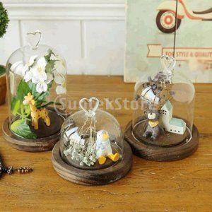 ガラスカバーの風景の花瓶テラリウムのドームトレイ植物の花の装飾