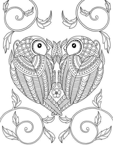 vogel malvorlagen word  amorphi
