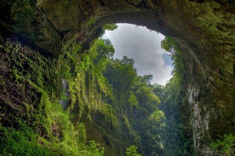 Fond écran nature arche naturelle dans la jungle magnifique beaute nature