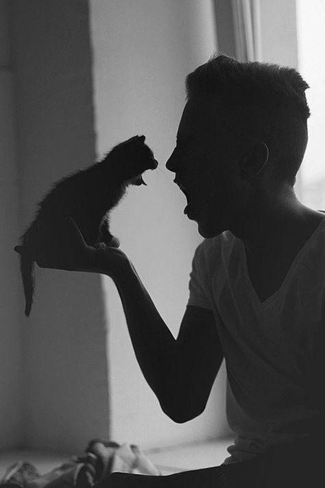 Des Hommes Et Des Chatons : hommes, chatons, Idées, Hommes, Chatons, Chaton,, Homme,, Homme