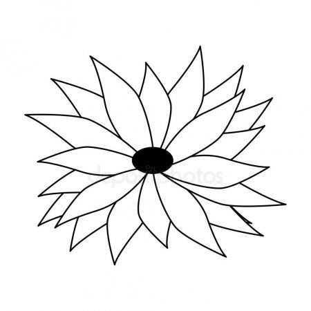 Tropical Floral Botanical Environment Cartoon In Black And White