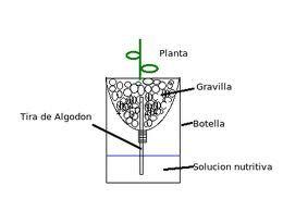 Hidroponic garden in spanish DIY