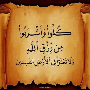 Quran Hd 002030 وإذ قال ربك للملائكة إني جاعل في الأرض خليفة قالوا أتجعل فيها من يفسد فيها ويسفك الدماء Quran Hd Islamic Quotes Quran Quotes