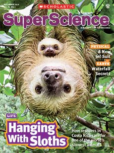 A Better Brush Engineering Article for Students | Scholastic SuperScience Magazine