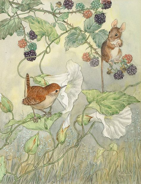 Molly Brett illustration- a little wren and mouse with morning glory and raspberries.