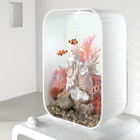 Wow! This fish tank is a bit nice! Perfect new house for Estoban (my fish).    The biOrb Aquarium in white, from PondQuip.com.au