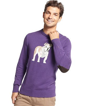 Tommy Hilfiger Sweater Bulldog Crewneck Sweater I Desperately Need