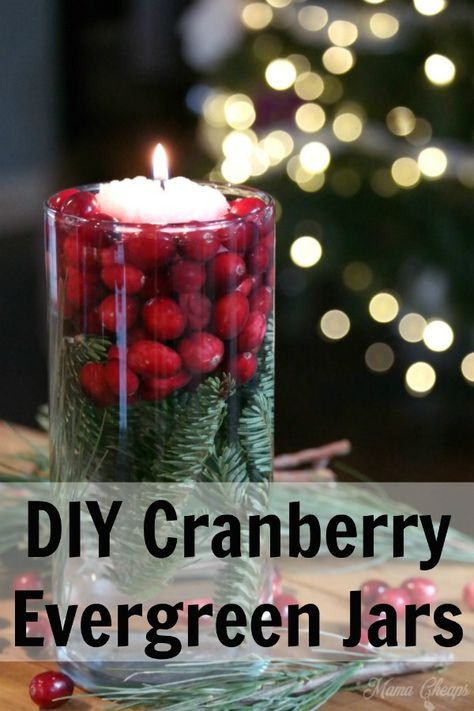 Einfache Cranberry Evergreen Jars Urlaub DIY Dekor - Our Wedding - Winter Winter Wedding Centerpieces, Simple Centerpieces, Flower Centerpieces, Centerpiece Ideas, Graduation Centerpiece, Quinceanera Centerpieces, Anniversary Centerpieces, Cranberry Centerpiece, Christmas Themes