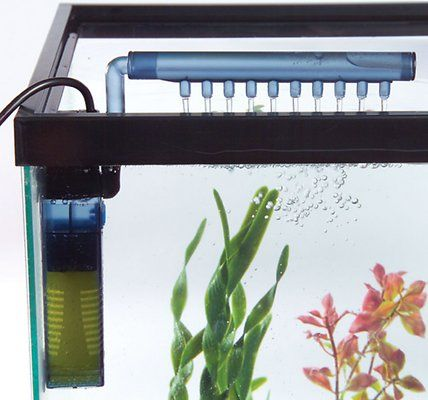 Tom Pet Products Mini Internal Aquarium Filter 5 Gal Chewy Com Aquarium Filter Best Aquarium Filter Aquarium Setup