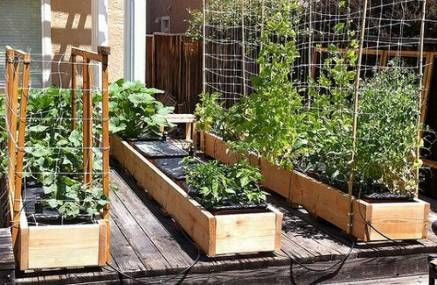 Garden Rooftop Diy Raised Beds 15 Ideas Diy Garden Vegetable