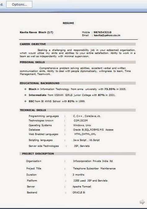 make free resume online Sample Template Example of ExcellentCV - j2ee jsp resume