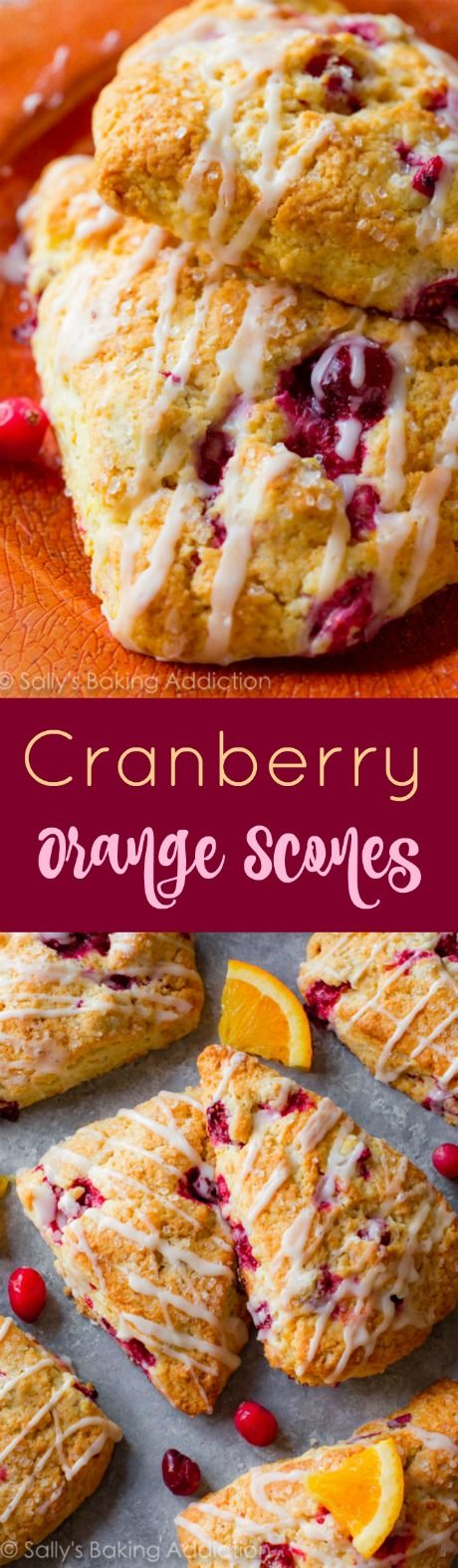 The bright flavor, the ease of the recipe, the crumbly edges, the cranberries, the fresh orange zest... just stop what you're doing and get baking!