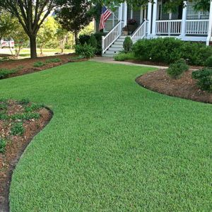 Empire Turf Green Acres Turf Farm Artificial Grass Patio Lawn And Landscape Shade Grass