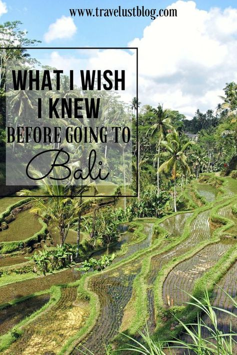 What I Wish I Knew Before Going to Bali, Indonesia - Travelust | What to do in Bali | Bali Tourism | Back packing Southeast Asia | Bali Travel | Bali Wanderlust | #Bali #Indonesia #SoutheastAsia