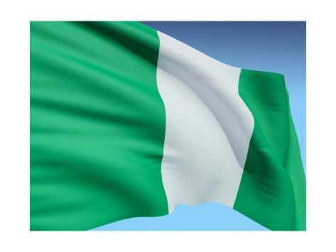 Flag Of Nigeria Art Print Bioraven Art Com Art Prints Nigeria Flag Print