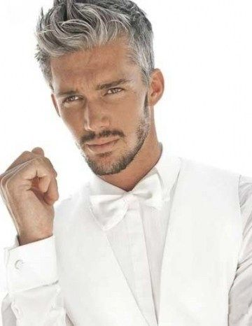 Manner S Frisuren Graue Haare Moderne Color De Cabello Luis