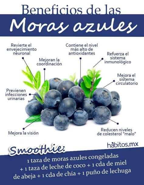 Hábitos Health Coaching | LOS BENEFICIOS DE LAS MORAS AZULES