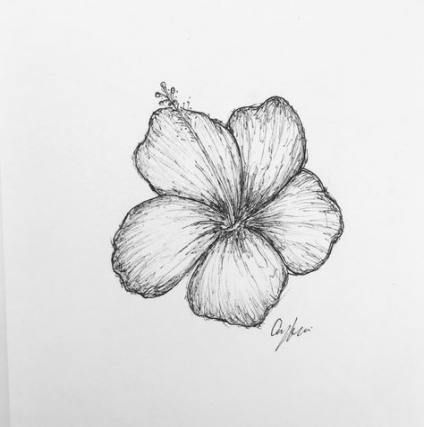 52 Ideas Flowers Sketch Tattoo Small Hawaii Flower Tattoos Flower Sketches Hibiscus Flower Tattoos