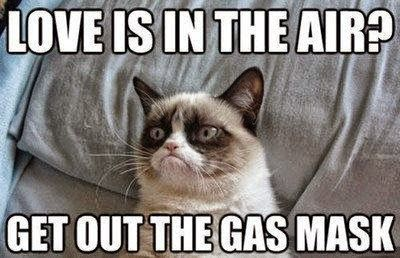 Valentine S Day Clean Meme Central Funny Grumpy Cat Memes Grumpy Cat Quotes Grumpy Cat Humor
