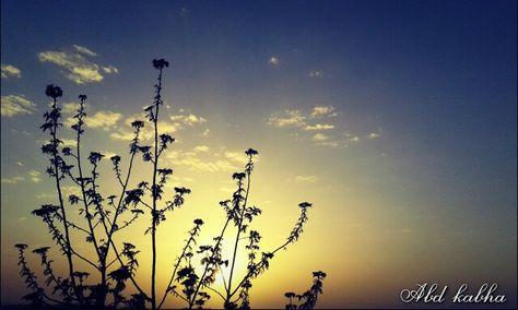 Image From Sunset Sun In The Village Of Barta A Palestine صورة من غروب الشمس الشمس في قرية برطعة فلسطين Poster Lamp Post Art