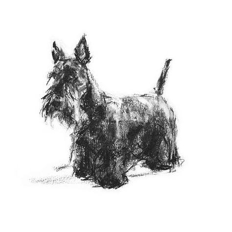 New Scottish Terrier Pet Dog 6 Notecards Envelopes Pen Gift Set Terriers Dogs