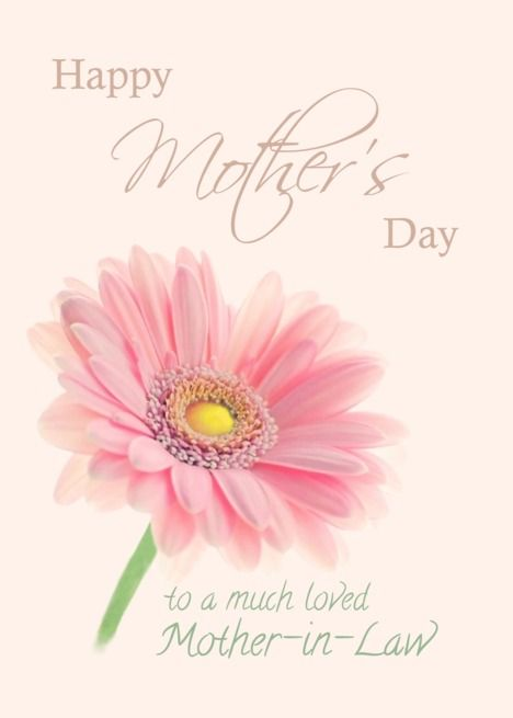 Mother In Law Happy Mother Rsquo S Day Pink Gerbera Daisy On Shell Pink Card Ad Affiliate Rsquo Day Happy Mothers Happy Mothers Day Mother Day Wishes