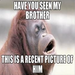 Have You Seen My Brother This Is A Recent Picture Of Him Meme Funny Sister Memes Sisters Funny Brother Sister Quotes Funny