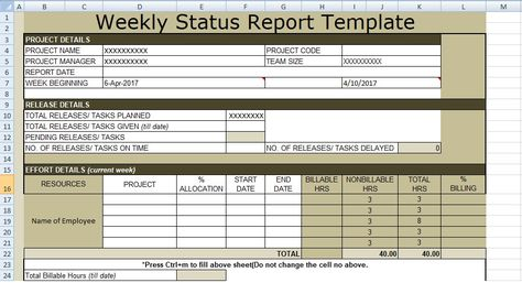 140 best Project Management Business Tracking Templates images on - weekly progress report template