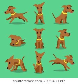 Cartoon Character Brown Greyhound Dog Poses Puppy Cartoon Dogs