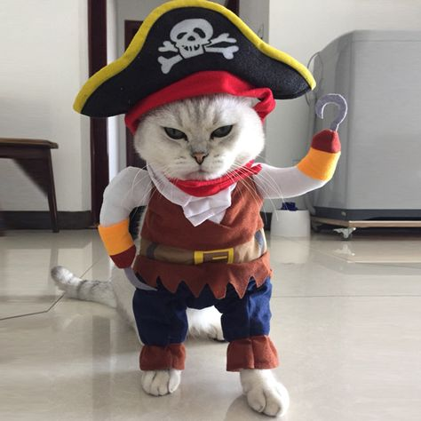 Halloween Pirate Cool Cute Dog Pet Cosplay Costume Clothing NOTE: Please compare the detail sizes with yours before you buy!!! Use similar clothing to compare with the size.