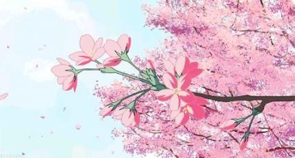 51 Ideas Sakura Tree Kawaii Anime Scenery Aesthetic Anime Anime Background