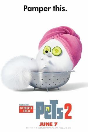 The Secret Life Of Pets 2 Hela Filmen Pa Natet Undertexter Hd ギジェット ペット 映画