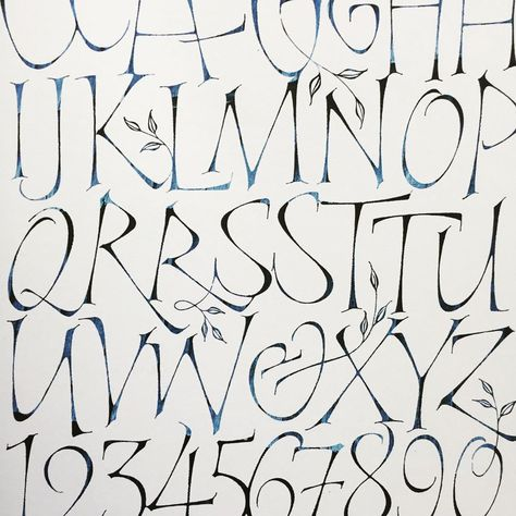 1287 Best Calligraphy And Bookmaking Images Lettering