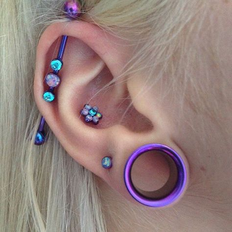 jewellery from anatometal, industrial, conch, stretched ear