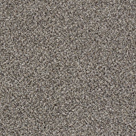 Carpet Sample Adventurous Color Daring Twist 8 In X 8 In Ef 226220 The Home Depot Carpet Samples Diy Carpet Carpet Colors