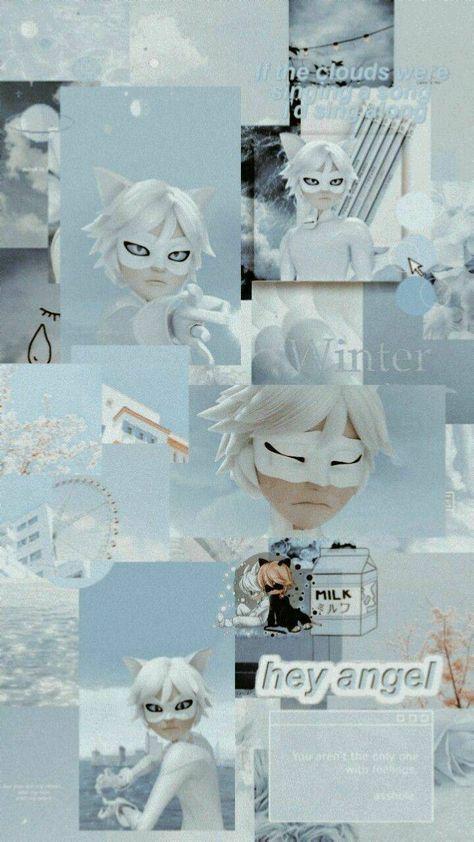 Cat Blanc wallpaper by gabiimarotti - 02 - Free on ZEDGE™