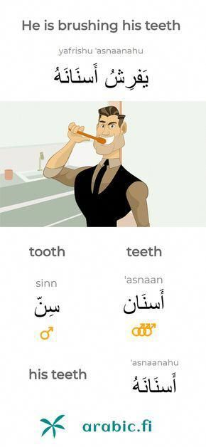 Learning Arabic Msa Fabiennem The Arabic Sentence He Is Brushing His Teeth The Arabic Word For Tooth Is Learning Arabic Arabic Sentences Arabic Language