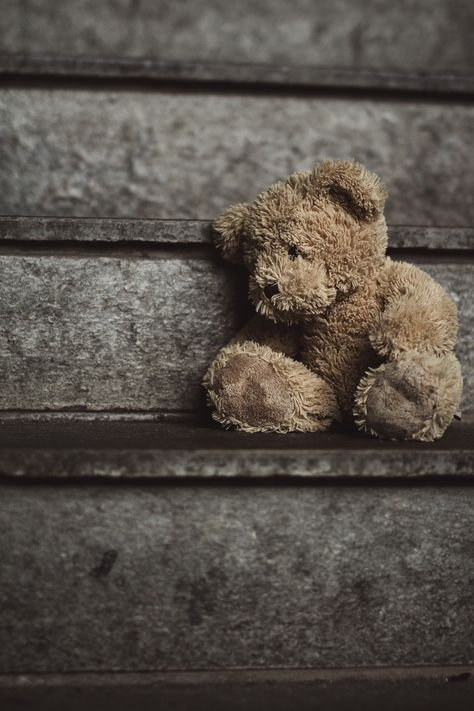 Lonely Teddy - null