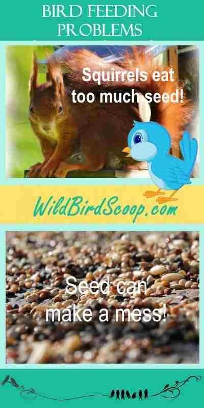 JCS Wildlife polylumber Hummingbird Nest Builder