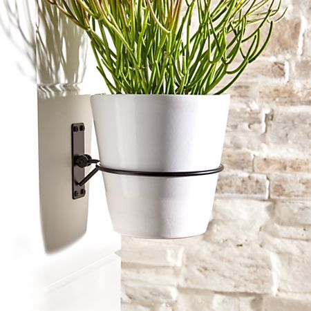 Wall Planter Hook Reviews Crate And Barrel In 2020 Metal Wall Planters Wall Planter Wall Planters Indoor