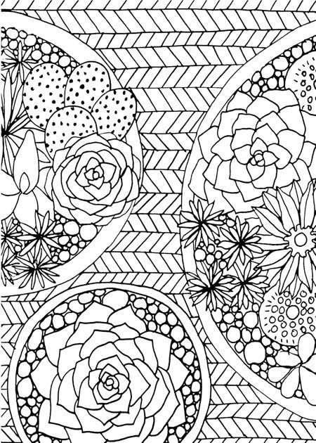 13 Best Succulent Cactus Coloring Books Pages Cute Coloring