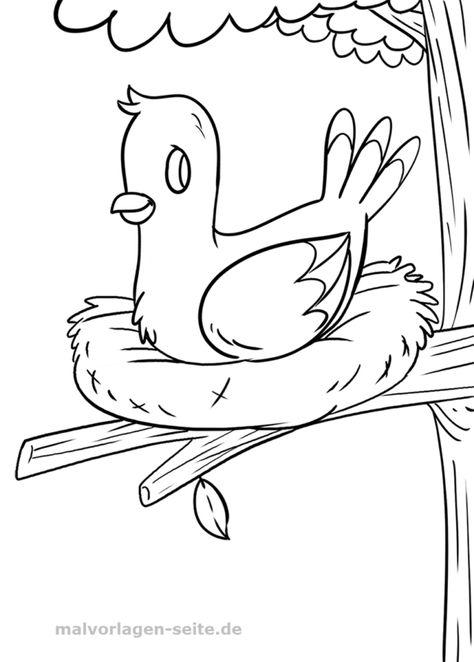 malvorlage vogel  ausmalbilder malvorlagen ausmalen
