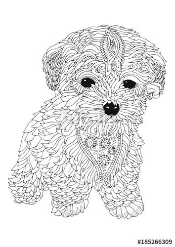 Image Result For Adult Coloring Book Dogs Golden Doodle With