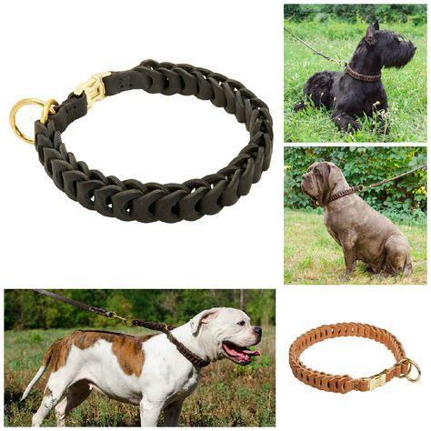 fermeture collier pour chien