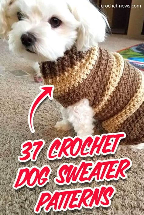 Ideas For Dogs 37 Crochet Dog Sweater patterns to keep your pooch's warm this winter. Stylish coats, hoodies and lots of unique and adorable designs that will keep your dog cozy and warm. Patterns form XXS dogs to large dogs inside. Crochet Dog Sweater Free Pattern, Dog Coat Pattern, Crochet Dog Patterns, Sweater Patterns, Knit Dog Sweater, Sweater Coats, Crochet Ideas, Pet Sweaters, Small Dog Sweaters