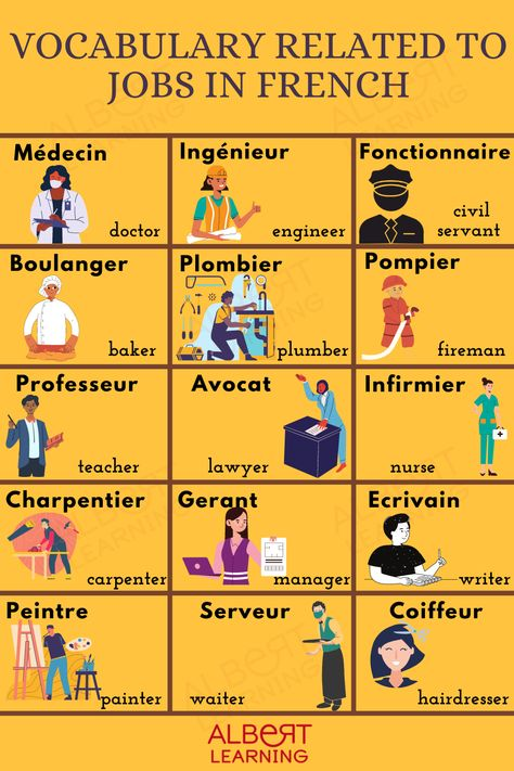 Vocabulary Related to Jobs in French