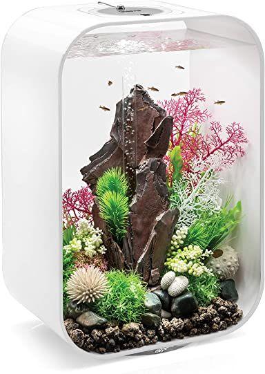 Amazon Com Biorb Life In 2020 Biorb Led Lights Acrylic Aquarium