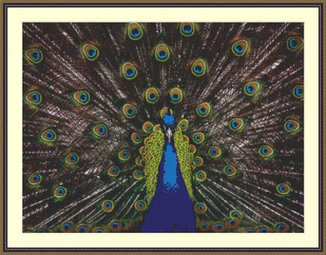 Cross Stitch Pattern Proud.  This cross stitch pattern depicts a stunning peacock showing it's tail feather to their full glory.   If you're a lover of birds, especially peacocks, the colours that create this natural scene would blend into may different colour schemes, then this cross stitch ...
