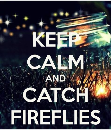 List Of Pinterest Catch Fireflies Quotes Pictures Pinterest Catch